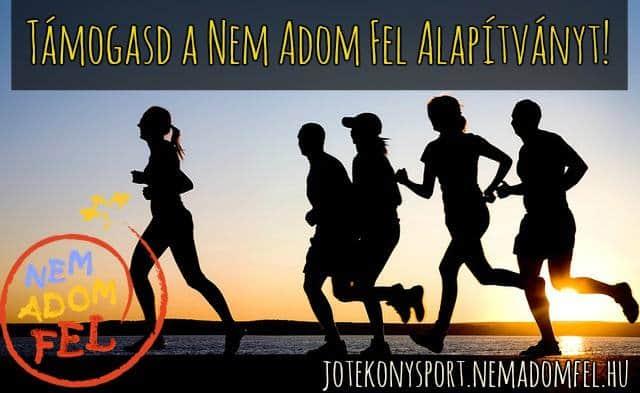 NAF_jótékony sportkövet_kép